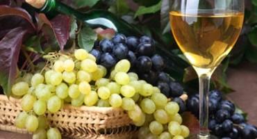 Apsolutno je zabranjeno dodavanje šećera ako se žele vrhunska vina