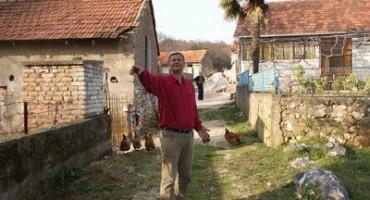 Vuk zašao među kuće, umalo stradali mještani !