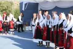 """Međunarodna smotra folklora """"Gospojina 2010"""" Vidoši"""