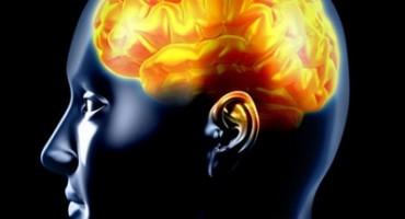 Encefaltitis (upala mozga)