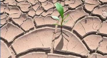 MALO TKO TO PAMTI Duvanjsko polje tri mjeseca bez kapi kiše