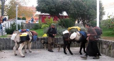 Francuski par koji pješači s dva magarca i dva psa stigao do Trebinja