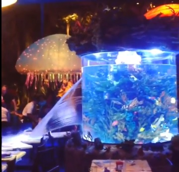 Puknuo akvarij i napravio paniku u restoranu