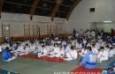 Judo klub Borsa