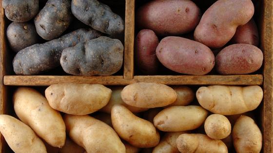 Krumpir(drugi dio): beskorisno povrće ili dar prirode?