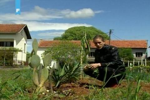Ljubuški: Petar Dugandžić želi od djedove kuće napraviti botanički vrt
