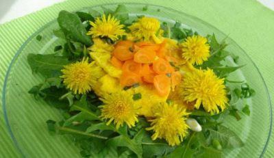 MASLAČAK (Taraxacum officinale) Fam. Asteraceae