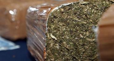 Na Siciliji zaplijenjene više od 42 tone kanabisa