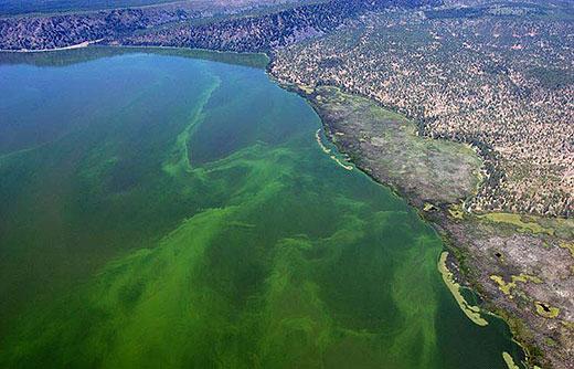 Tajne zdravlja Klamatskog jezera