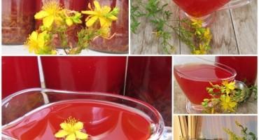 Priprema kantarionovog ulja - Recept