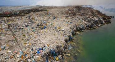 Svake godine plastika ubije 1,5 milijuna ptica, riba, kitova, kornjača...