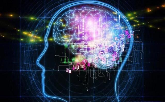Najveći prijatelj mozga: Uz borovnice bolje pamtite i povećajte inteligenciju