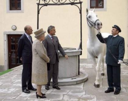 Kako smo zajebali austrougarske konjušare | Hercegovina.Info