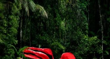 Prirodna Ljepota Hercegovke Dinke Džubur: Snaga se nalazi u čistoći srca i bistrini uma