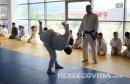 judo borsa polaganje