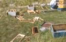 Široki Brijeg: Medvjed napravio veliku štetu pčelaru