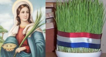 Kako da božićna pšenica bude što bolja