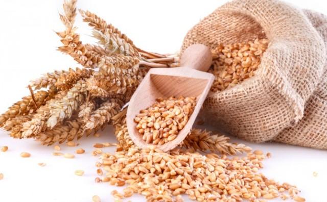 Što je alergija pšenice?