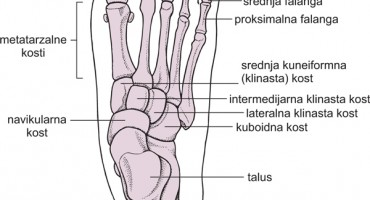 Bolesti stopala