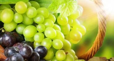 Grožđe – hrana 'bogova' za zdravo srce i kosti