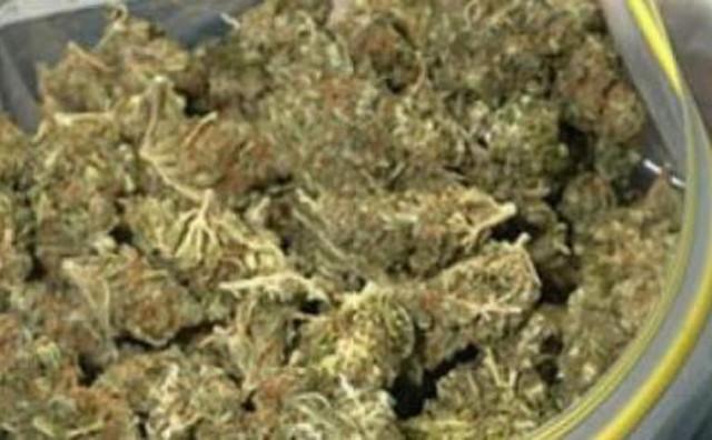 Policija ga uhvatila u preprodaji 15 kilograma marihuane