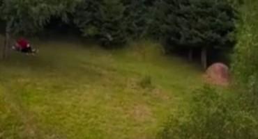 Dron snimio Bosance u ljubavnoj akciji na livadi
