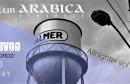 Allnighter w/ No Government u Arabici