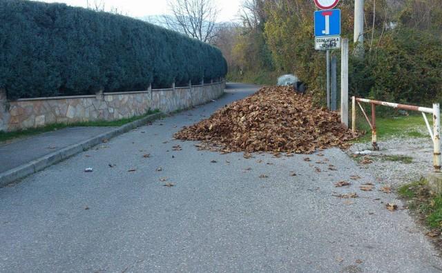 Mostar: Zašto je jedna od najljepših ulica postala deponija lišća