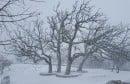 goranci snijeg