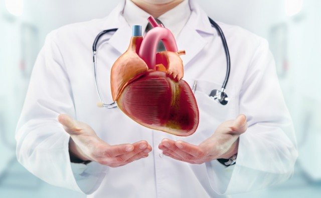 Zdravlje srca i prevencija kardiovaskularnih bolesti