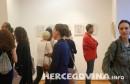 Šunjić izložba