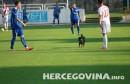 Pas prekinuo nogometnu utakmicu HŠK Zrinjski-NK Gošk
