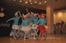 plesni klub zrinjski