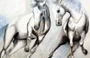 Prekosutra otvorenje izložbe slika Matee Brekalo