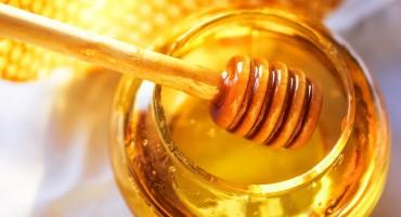 Alarmantna količina pesticida otkrivena u medu širom svijeta