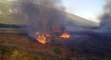 Vlada FBiH izdvojila 250.000 KM za sanaciju posljedica požara u Hutovom blatu