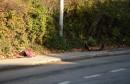 Hercegovina zavijena u crno: U teškim prometnim nesrećama poginula dva mladića