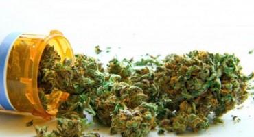Još nema naznaka kada će se marihuana kao lijek naći u bh. lijekarnama