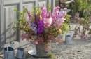 6 vrsta cvijeća koje se sadi u rano proljeće