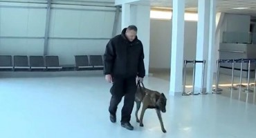 Pogledajte službenog psa Maverik koji pomaže pri radu GP BiH u Zračnoj luci Mostar