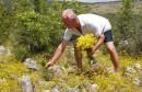 Propada prirodno bogatstvo Hercegovine
