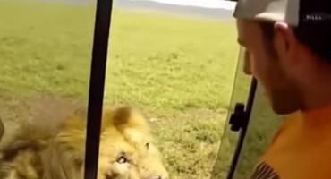 'Samo je htio da pomazi lava': Zastrašujući snimak obišao planetu