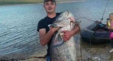 Hercegovac ulovio soma od 65 kilograma