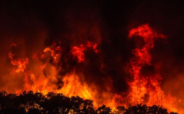 Zaustavljena vatrena fronta na Pelješcu! Vatrogasci su cijelu noć držali liniju obrane dugu tri kilometra