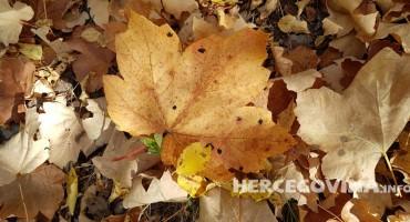 Sutra kalendarski počinje jesen