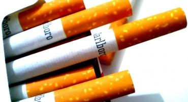 U Hercegovini policija oduzela više od 16.000 kutija cigareta