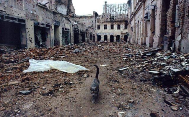 Ivana Klarić: Ne dirajte krunice prašnjave, pod ruševinama Grada koji stoji iskopan