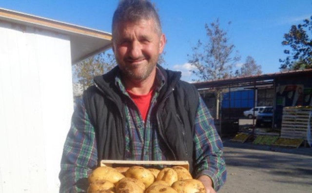 Čapljina: Prvi put u ponudi jesenski mladi krumpir iz - plastenika