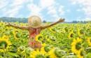 4 koraka za povratak u stanje dobrih vibracija