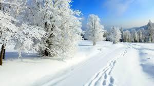 Stigle nove pahulje: Koliko kalorija troši čišćenje snijega?